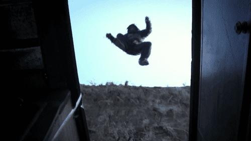 bigfoot_jump_jpg.png