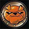 damage_control_logo.jpg