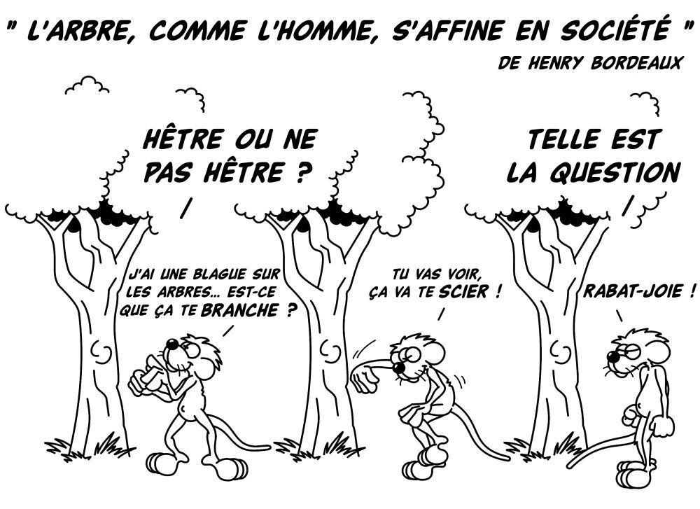 L_arbre__comme_l_homme__s_affine_en_soci__t___1.jpg
