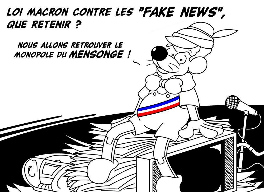 Loi_sur_les_Fake_News__CO_.jpg