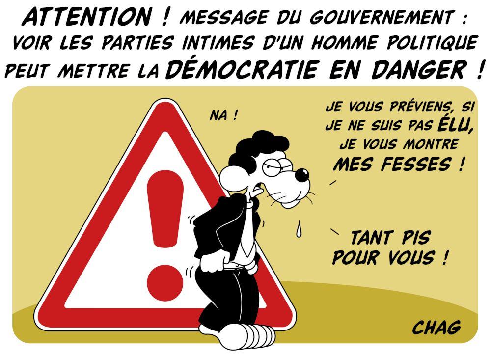 La_d__mocratie_en_danger__CO__-_Copie__2_.jpg