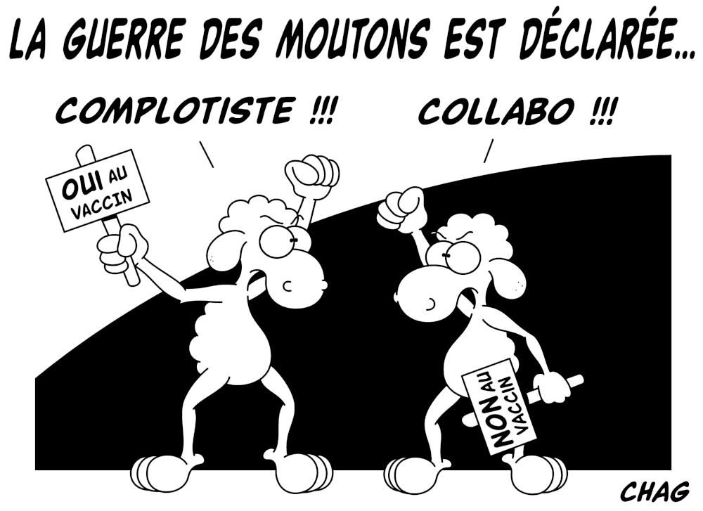 La_guerre_des_moutons_-_Copie__2_.jpg