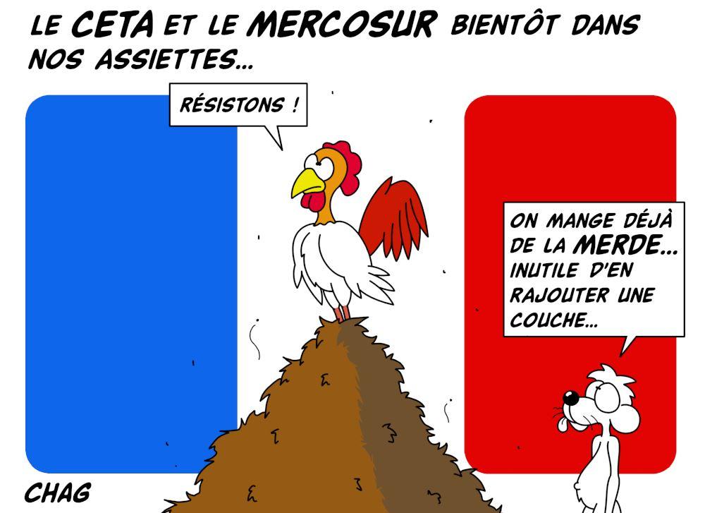 Le_CETA_et_le_MERCOSUR_-_Copie__2_.jpg