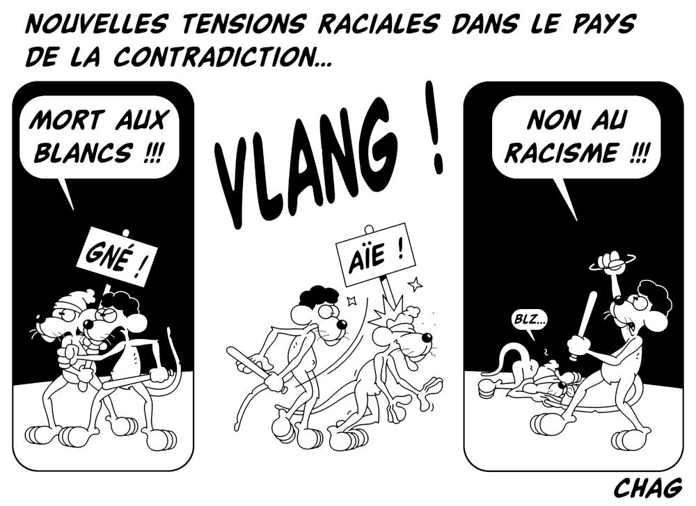 Tensions_raciales_aux_USA_-_Copie__2_.jpg