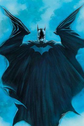 batman_676.jpg