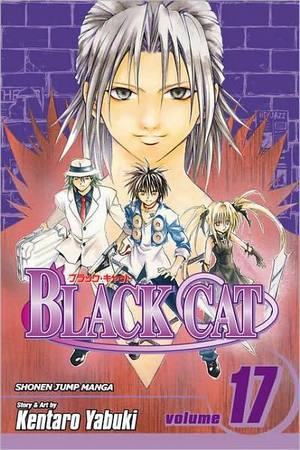 blackcat17.jpg