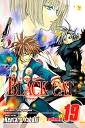 blackcat19.jpg