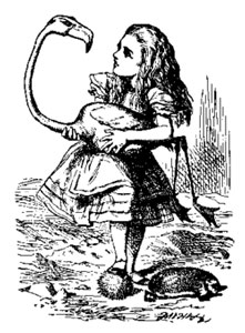 Alice-and-Flamingo.jpg