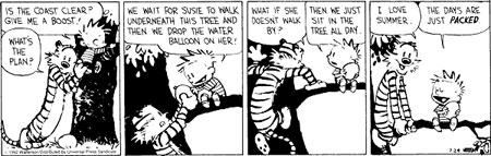 Calvin-Summer-days-are-just-Packed.jpg
