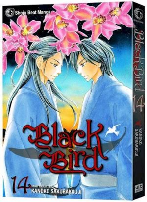 blackbird14.jpg